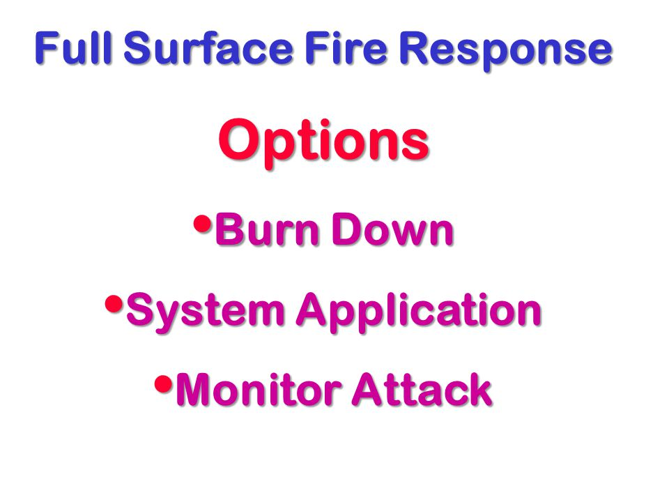 Full Surface Fire Response Options Burn Down Burn Down System Application System Application Monitor Attack Monitor Attack