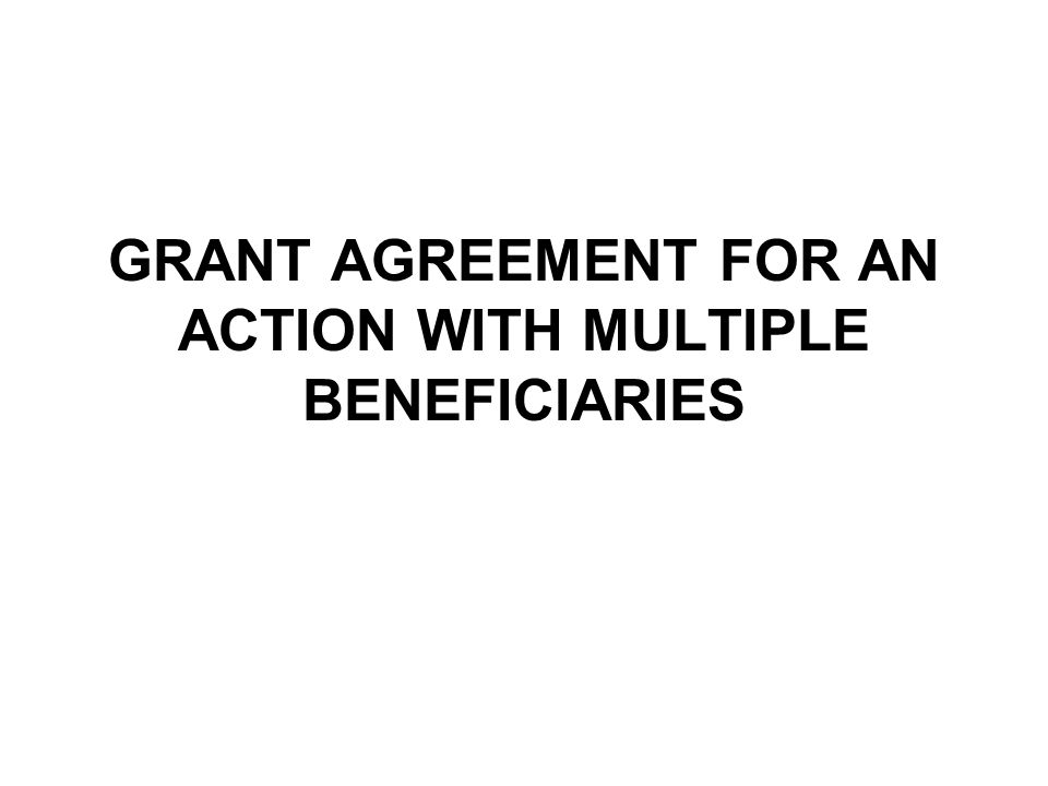 GRANT AGREEMENT FOR AN ACTION WITH MULTIPLE BENEFICIARIES