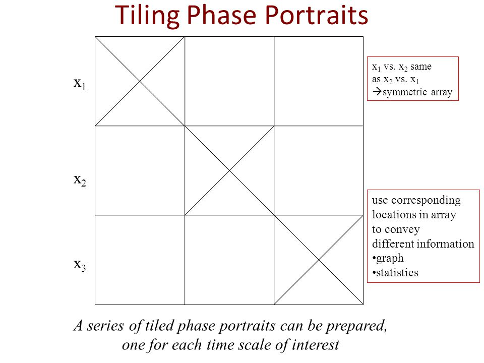 Tiling Phase Portraits x1x1 x2x2 x2x2 x1x1 x3x3 x1x1 k slope=k r 2 ~1 A series of tiled phase portraits can be prepared, one for each time scale of interest x1x1 x2x2 x3x3 x 1 vs.