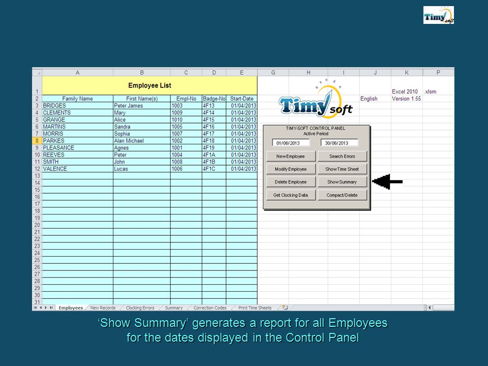 'Show Summary' generates a report for all Employees for the dates displayed in the Control Panel