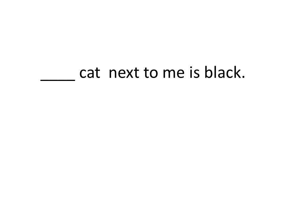 ____ cat next to me is black.