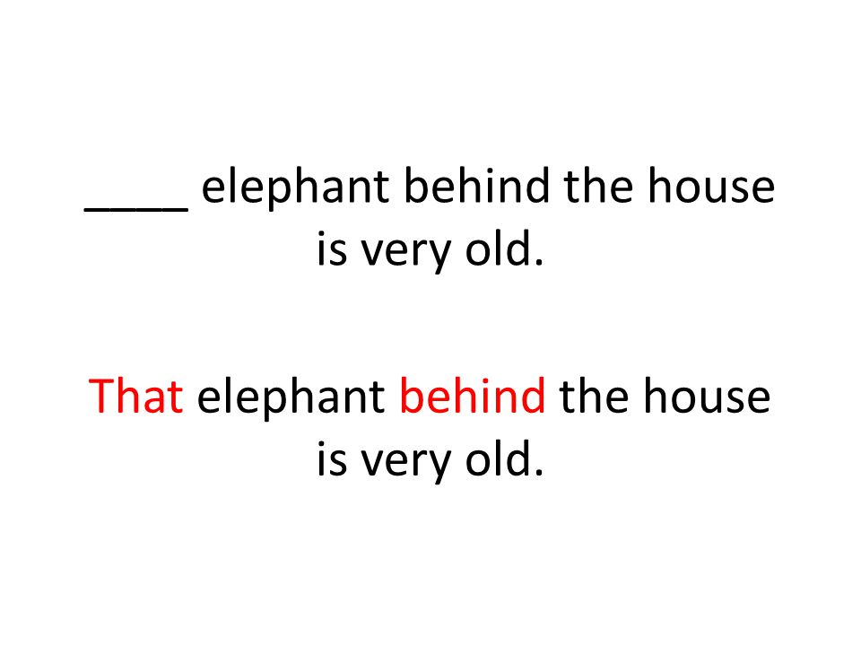That elephant behind the house is very old.