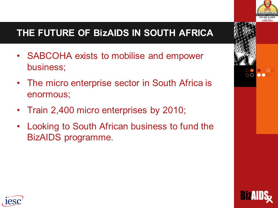 THE FUTURE OF BizAIDS IN SOUTH AFRICA SABCOHA exists to mobilise and empower business; The micro enterprise sector in South Africa is enormous; Train 2,400 micro enterprises by 2010; Looking to South African business to fund the BizAIDS programme.