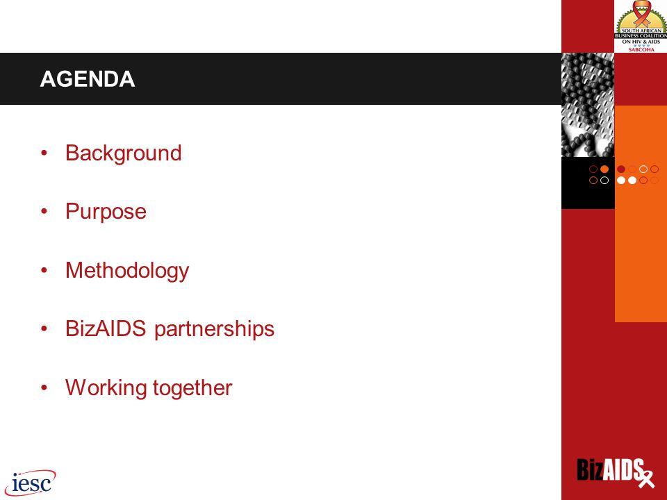 AGENDA Background Purpose Methodology BizAIDS partnerships Working together
