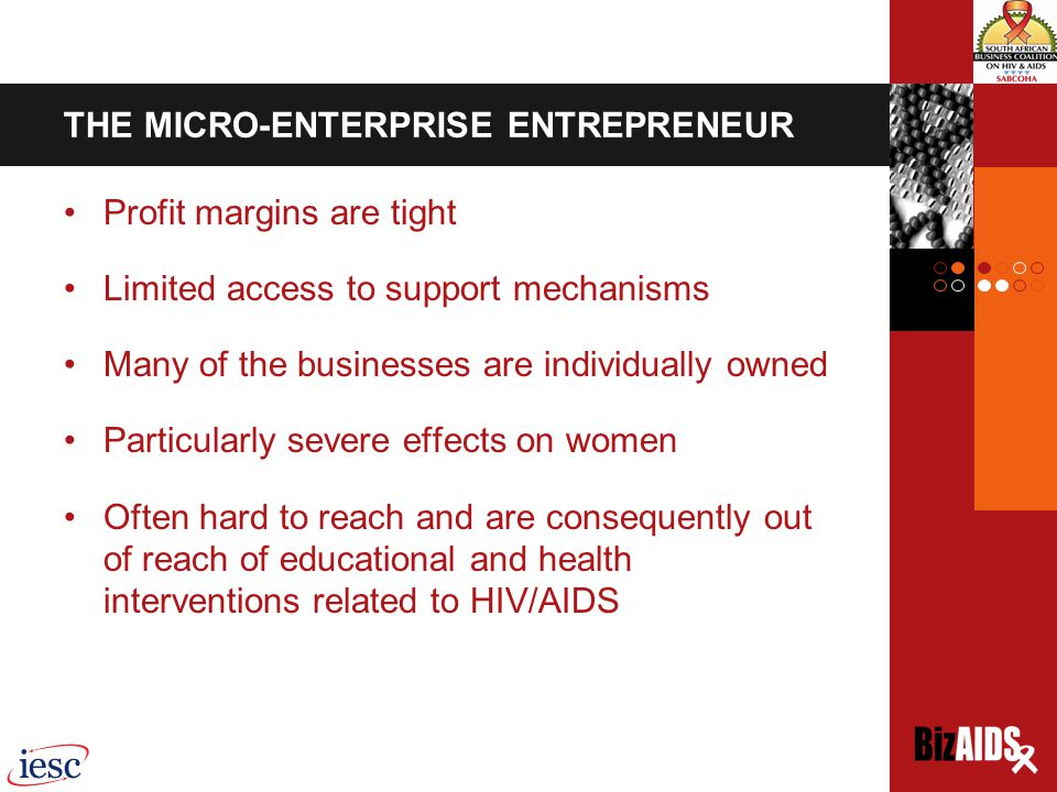 HOW BizAIDS CAME ABOUT International Executive Service Corps (IESC) SA pilot, which took place in 2004-2005, was also funded by USAID