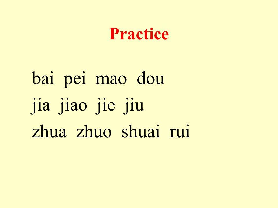 Practice bai pei mao dou jia jiao jie jiu zhua zhuo shuai rui