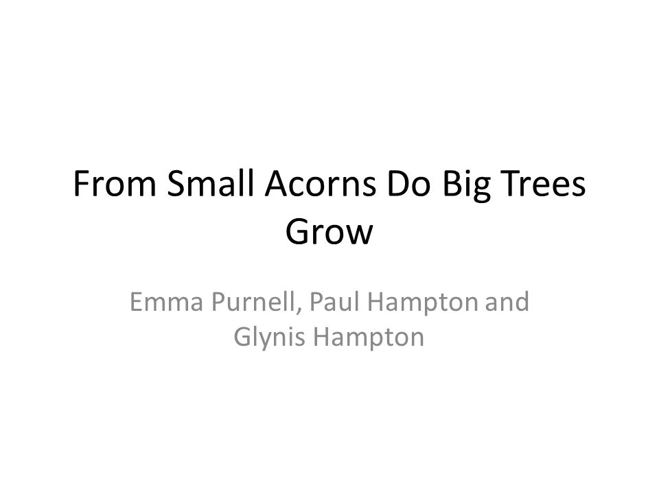 From Small Acorns Do Big Trees Grow Emma Purnell, Paul Hampton and Glynis Hampton