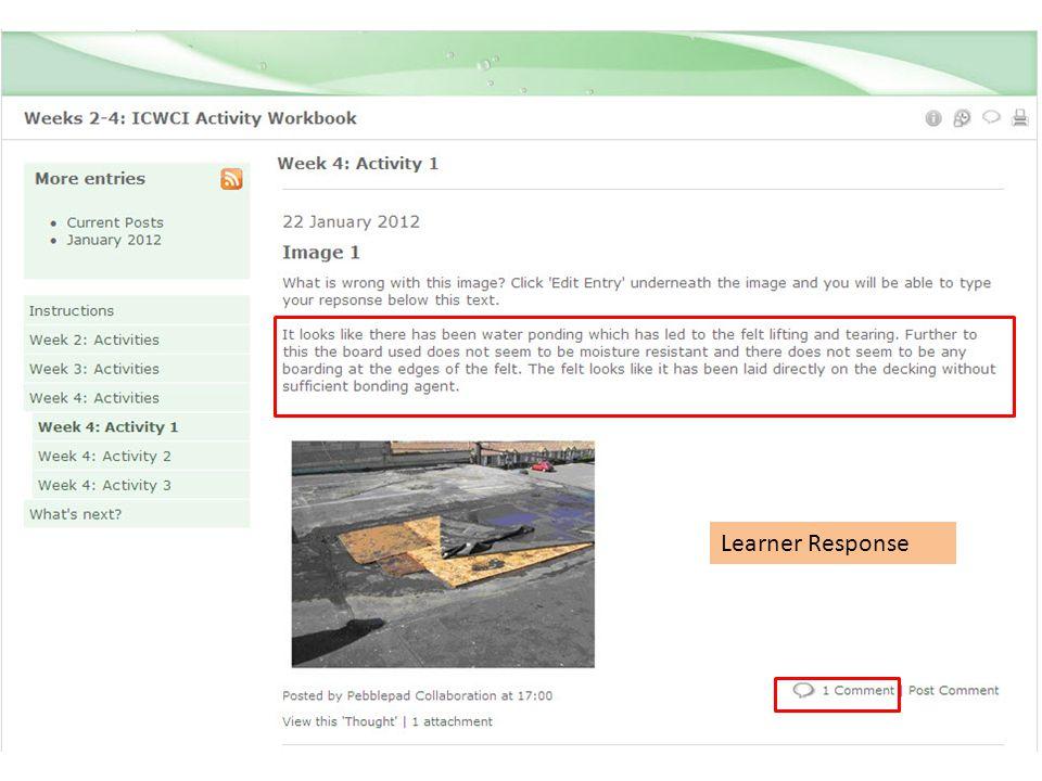 Learner Response