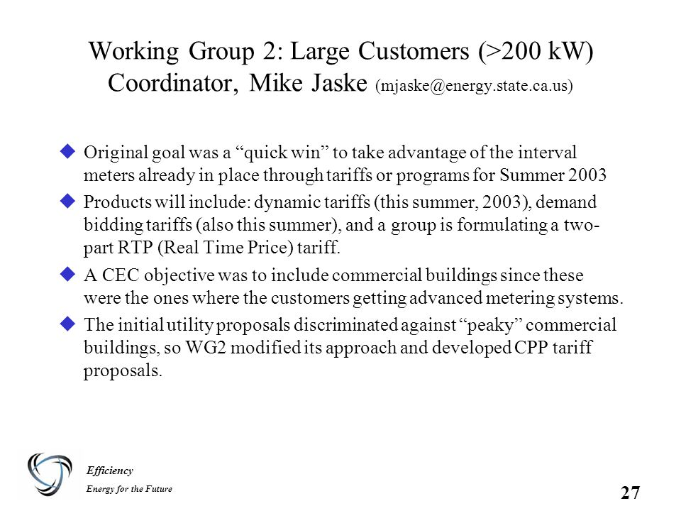 Efficiency Energy for the Future 27 Working Group 2: Large Customers (>200 kW) Coordinator, Mike Jaske (mjaske@energy.state.ca.us) uOriginal goal was a quick win to take advantage of the interval meters already in place through tariffs or programs for Summer 2003 uProducts will include: dynamic tariffs (this summer, 2003), demand bidding tariffs (also this summer), and a group is formulating a two- part RTP (Real Time Price) tariff.
