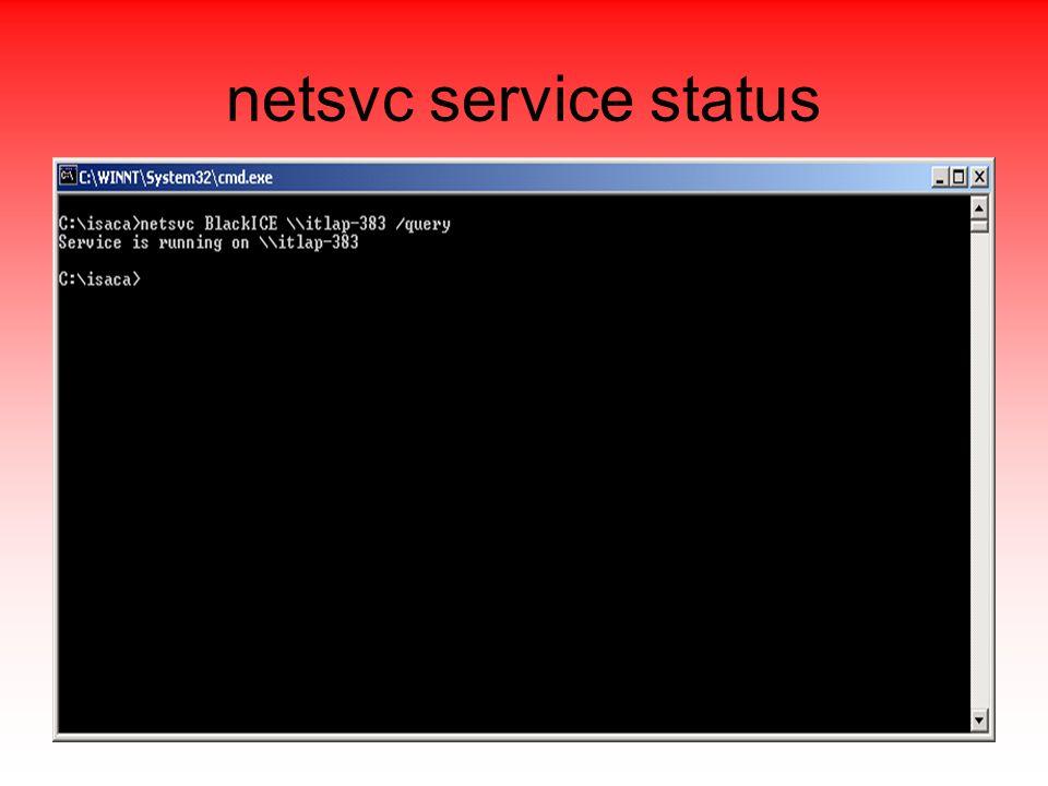 netsvc service status