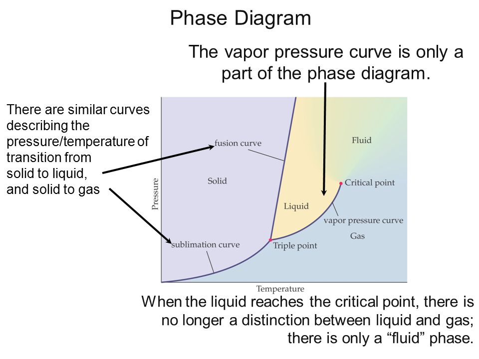 Phase Diagram The vapor pressure curve is only a part of the phase diagram.