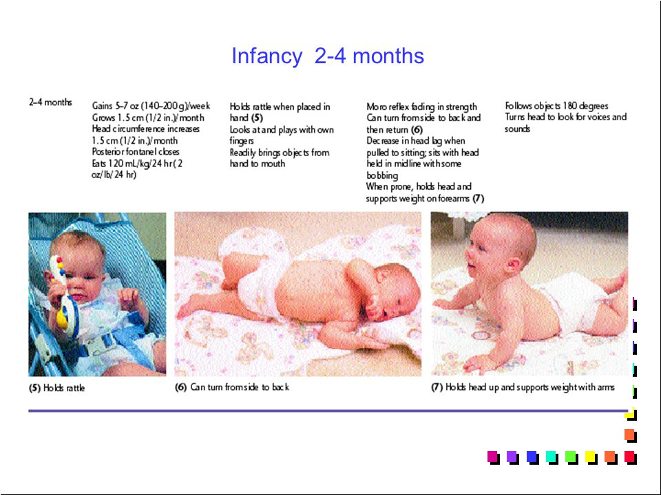 Infancy 2-4 months