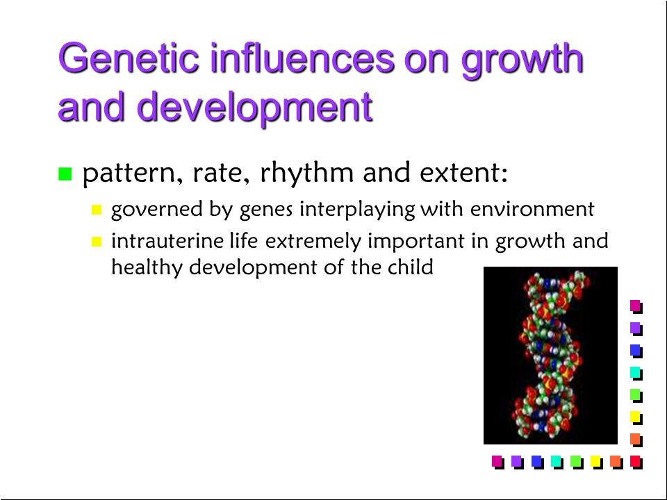 Genetic influences on growth and development n n pattern, rate, rhythm and extent: n n governed by genes interplaying with environment n n intrauterin