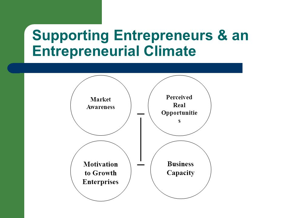 Supporting Entrepreneurs & an Entrepreneurial Climate Market Awareness Perceived Real Opportunitie s Motivation to Growth Enterprises Business Capacity