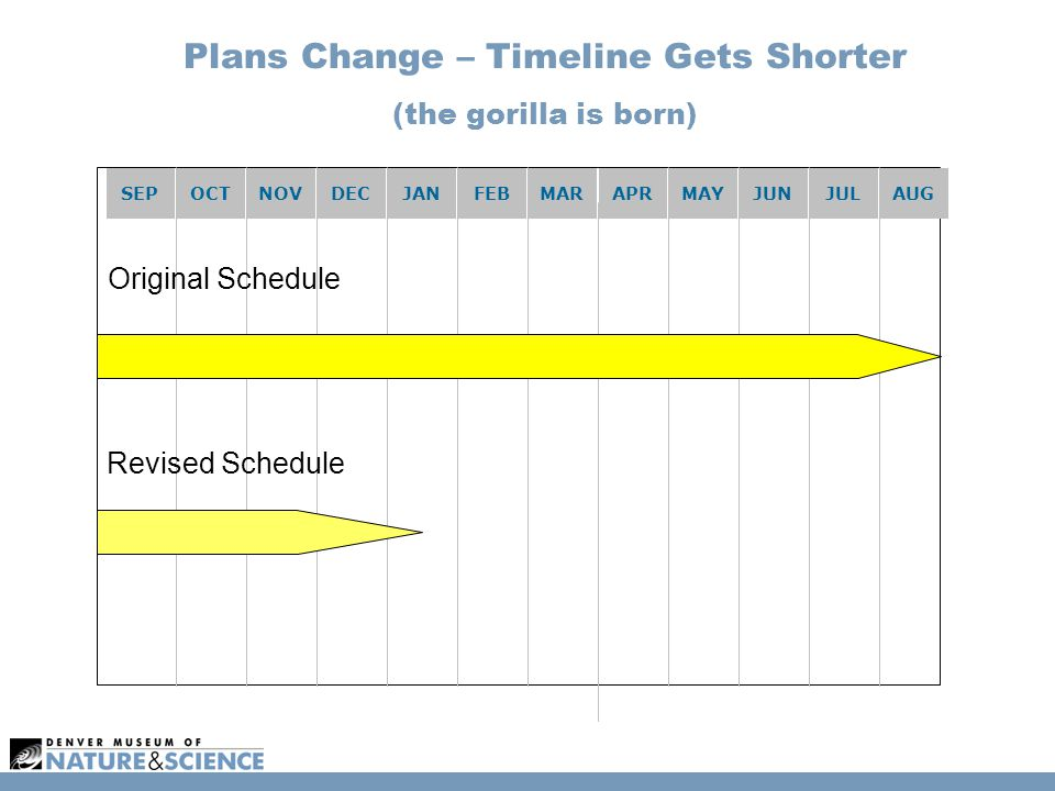 Plans Change – Timeline Gets Shorter (the gorilla is born) SEPOCTNOVDECJANFEBMARAPRMAYJUNJULAUG Original Schedule Revised Schedule