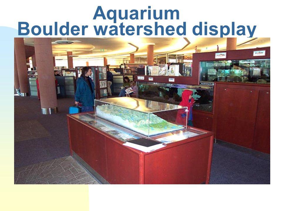 Aquarium Boulder watershed display