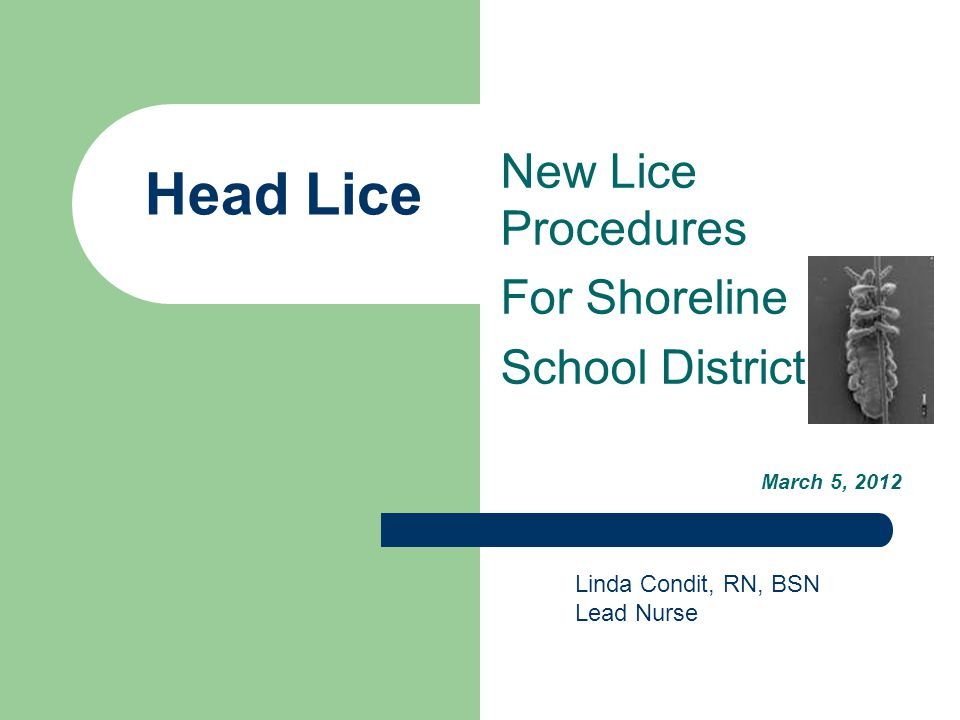 Procedures for Schools are changing all over the country School policies for dealing with lice are outdated, based on myths and untruths rooted in unfounded fears of rampant outbreaks.
