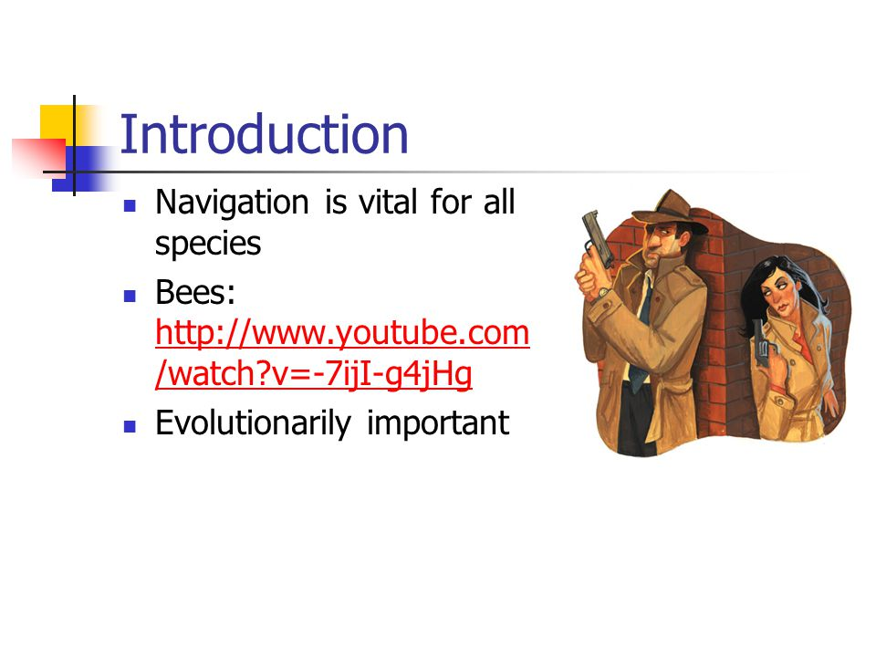 Introduction Navigation is vital for all species Bees: http://www.youtube.com /watch v=-7ijI-g4jHg http://www.youtube.com /watch v=-7ijI-g4jHg Evolutionarily important