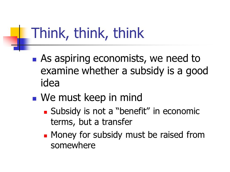 Think, think, think As aspiring economists, we need to examine whether a subsidy is a good idea We must keep in mind Subsidy is not a benefit in economic terms, but a transfer Money for subsidy must be raised from somewhere