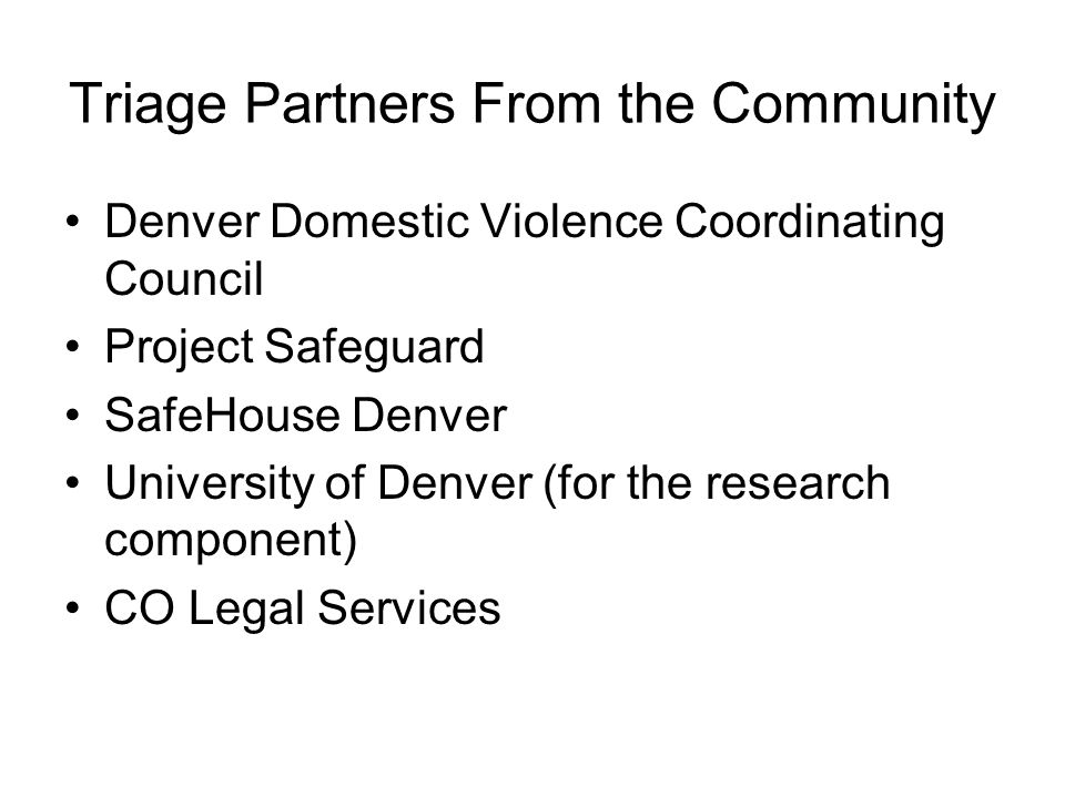 Triage Partners From the Community Denver Domestic Violence Coordinating Council Project Safeguard SafeHouse Denver University of Denver (for the rese