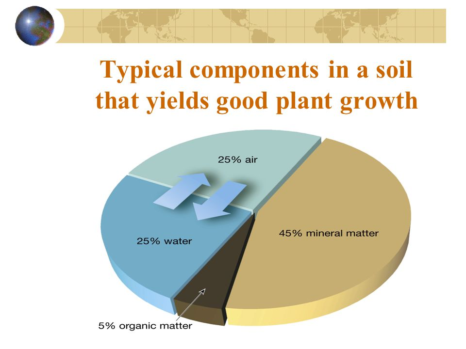 Typical components in a soil that yields good plant growth