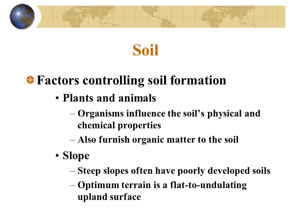 Soil Factors controlling soil formation Plants and animals –Organisms influence the soil's physical and chemical properties –Also furnish organic matt