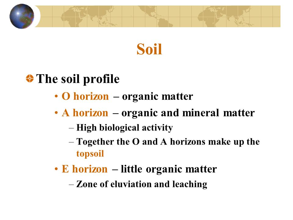 Soil The soil profile O horizon – organic matter A horizon – organic and mineral matter –High biological activity –Together the O and A horizons make