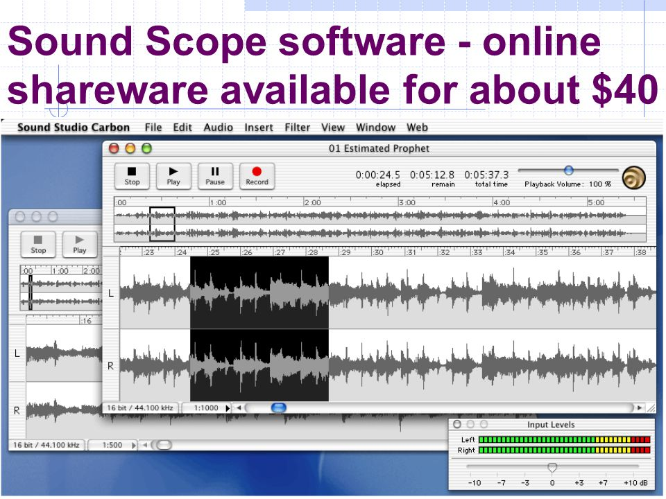 Sound Scope software - online shareware available for about $40