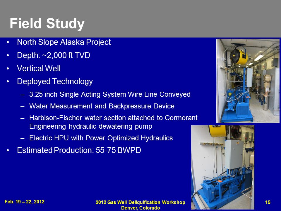 Feb. 19 – 22, 2012 2012 Gas Well Deliquification Workshop Denver, Colorado 15 Field Study North Slope Alaska Project Depth: ~2,000 ft TVD Vertical Wel