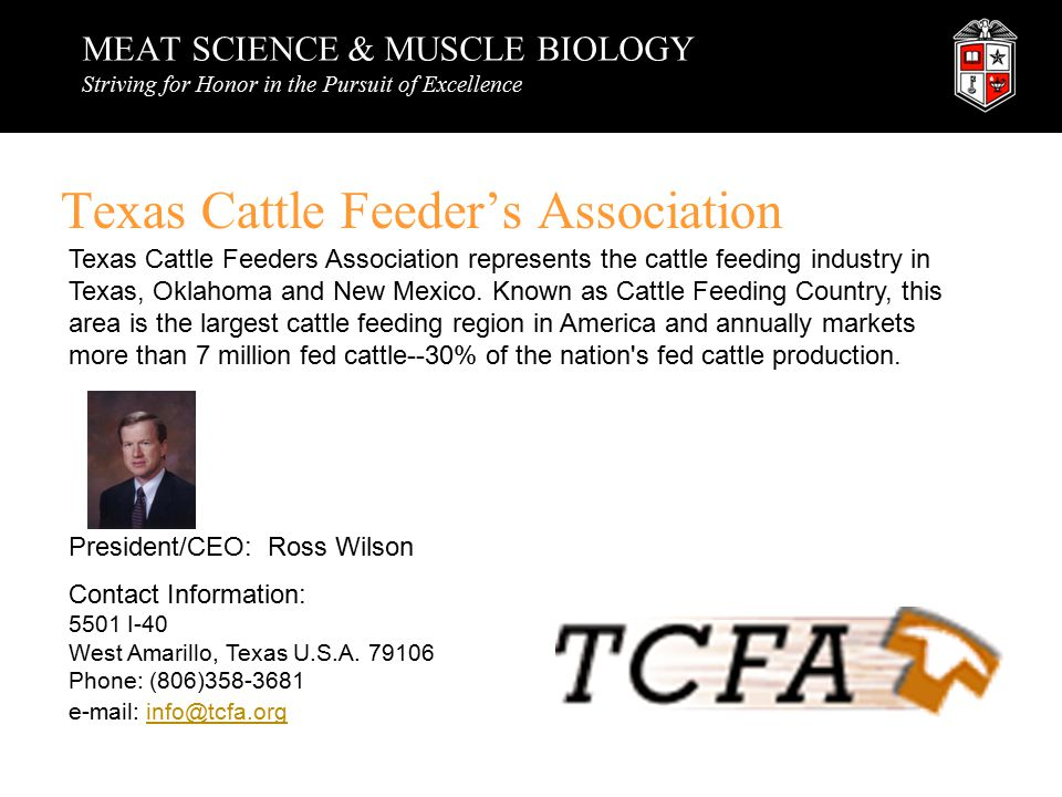 MEAT SCIENCE & MUSCLE BIOLOGY Striving for Honor in the Pursuit of Excellence Texas Cattle Feeder's Association Texas Cattle Feeders Association represents the cattle feeding industry in Texas, Oklahoma and New Mexico.
