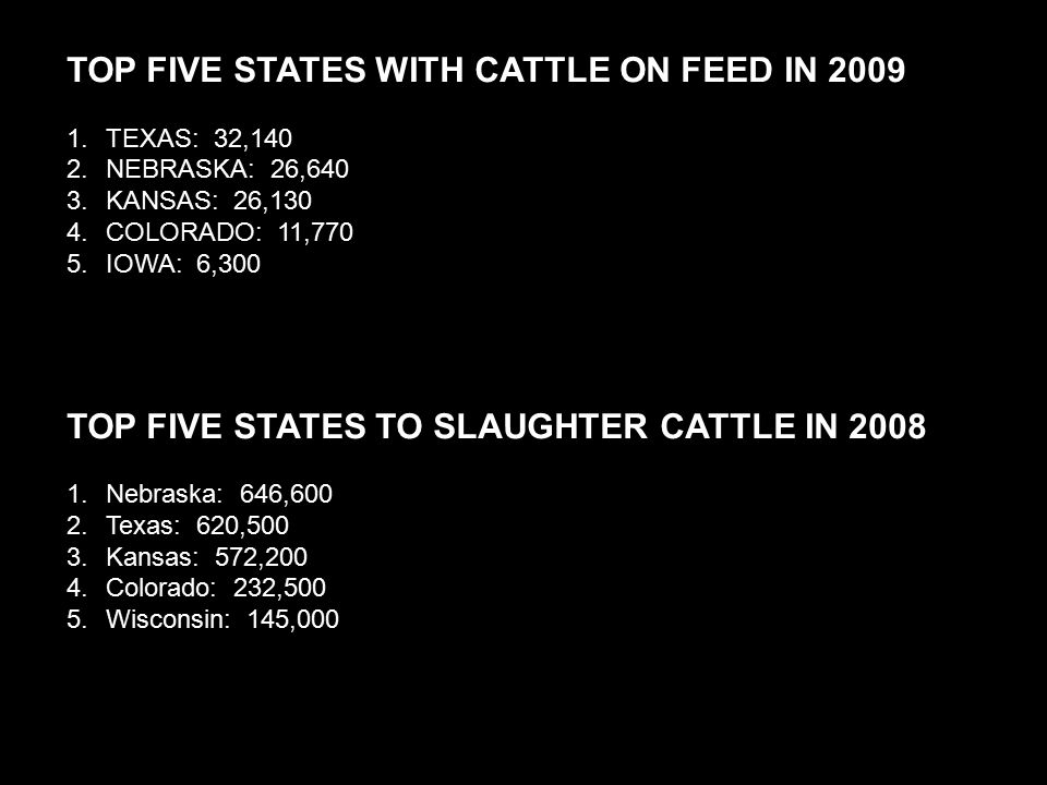 TOP FIVE STATES WITH CATTLE ON FEED IN 2009 1.TEXAS: 32,140 2.NEBRASKA: 26,640 3.KANSAS: 26,130 4.COLORADO: 11,770 5.IOWA: 6,300 TOP FIVE STATES TO SLAUGHTER CATTLE IN 2008 1.Nebraska: 646,600 2.Texas: 620,500 3.Kansas: 572,200 4.Colorado: 232,500 5.Wisconsin: 145,000