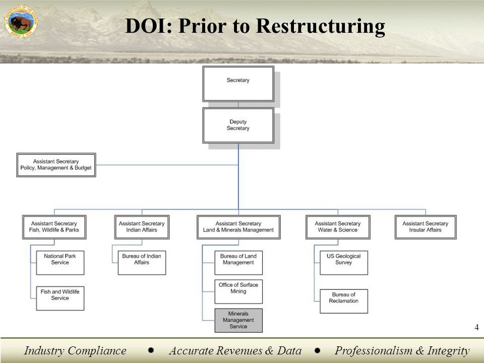 Industry ComplianceAccurate Revenues & DataProfessionalism & Integrity 4 DOI: Prior to Restructuring