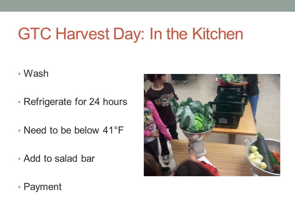 GTC Harvest Day: In the Kitchen Wash Refrigerate for 24 hours Need to be below 41°F Add to salad bar Payment