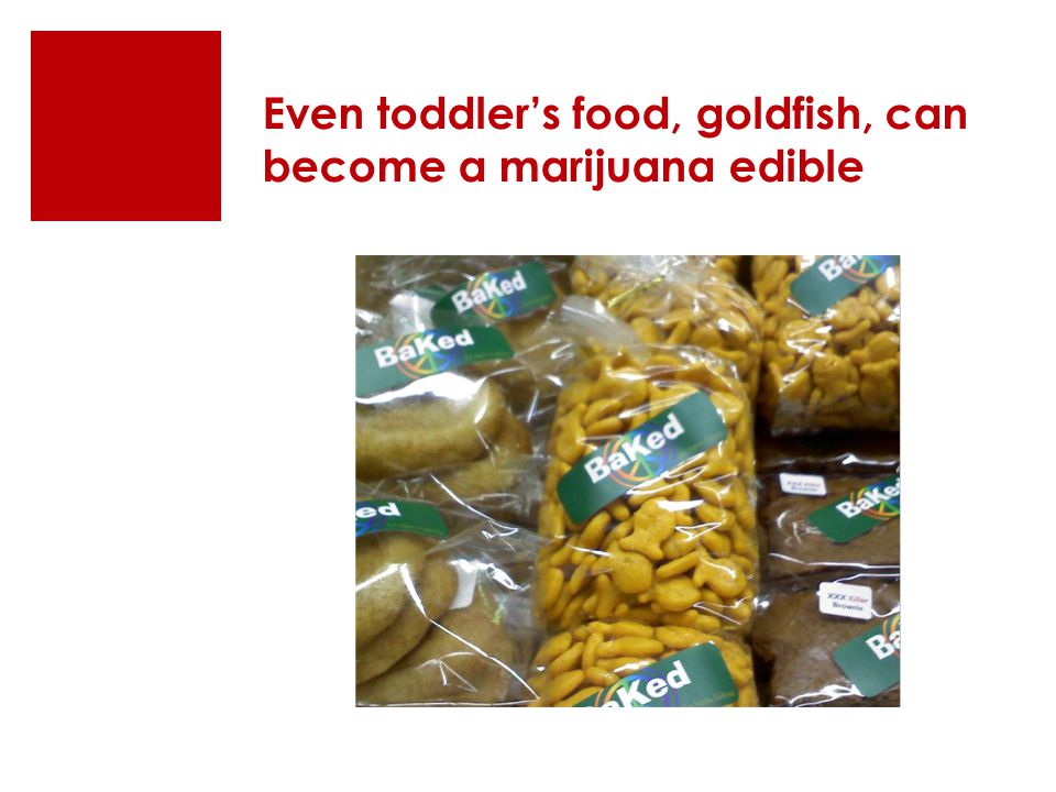 Even toddler's food, goldfish, can become a marijuana edible