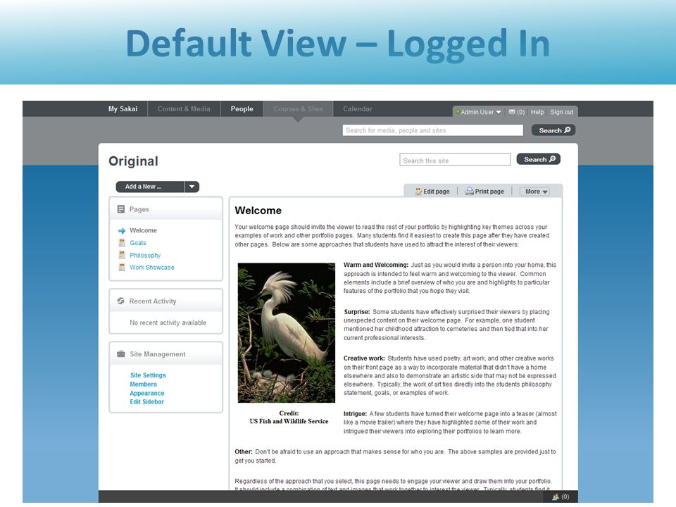 Default View – Logged In 21