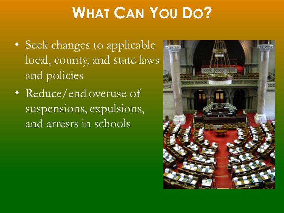Seek changes to applicable local, county, and state laws and policies Reduce/end overuse of suspensions, expulsions, and arrests in schools