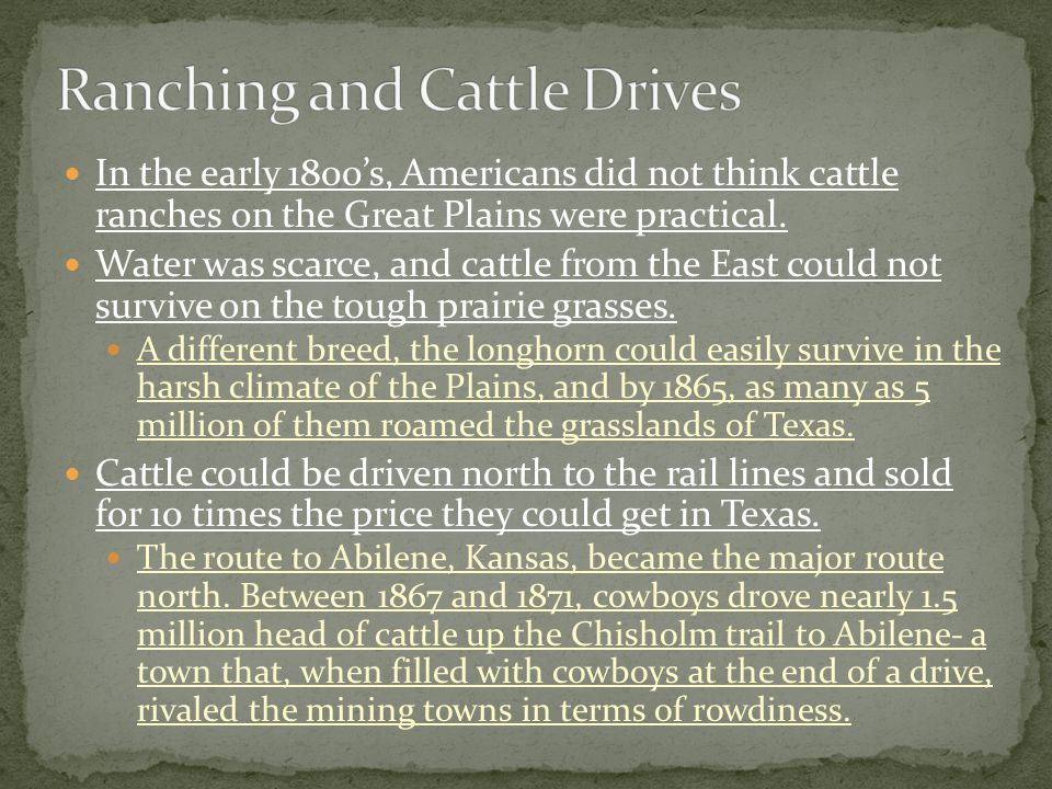 In the early 1800's, Americans did not think cattle ranches on the Great Plains were practical.