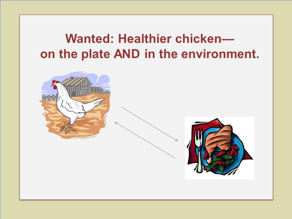 Wanted: Healthier chicken— on the plate AND in the environment.