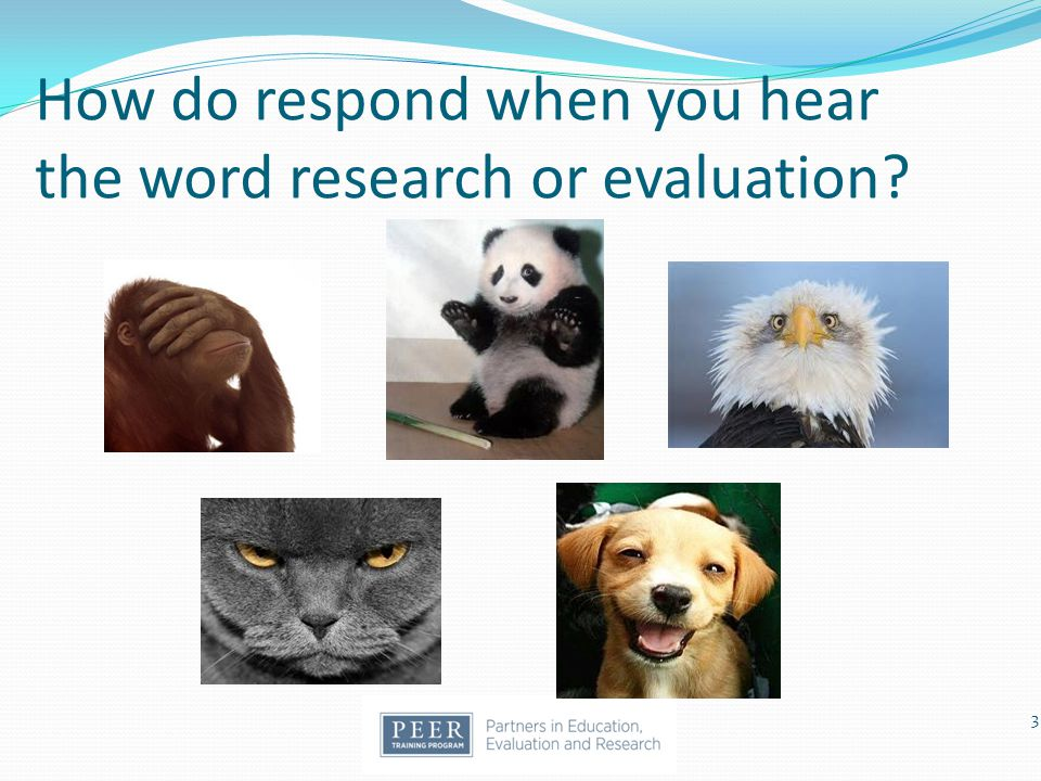 How do respond when you hear the word research or evaluation? 3