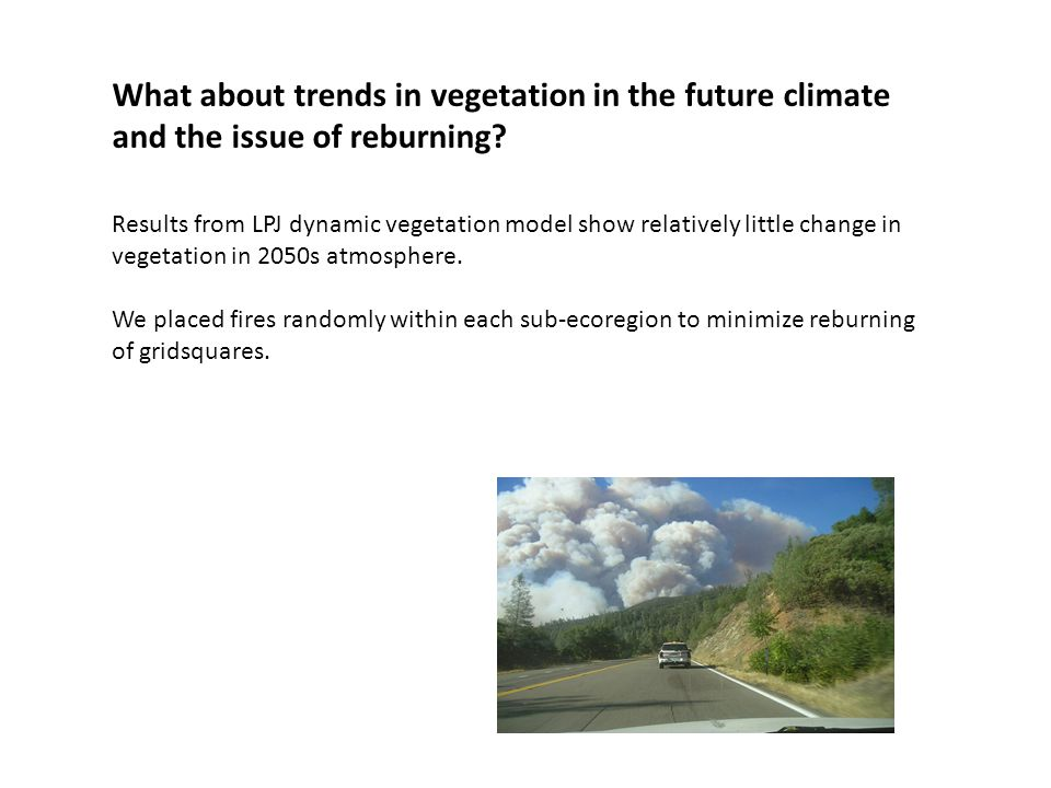What about trends in vegetation in the future climate and the issue of reburning? Results from LPJ dynamic vegetation model show relatively little cha