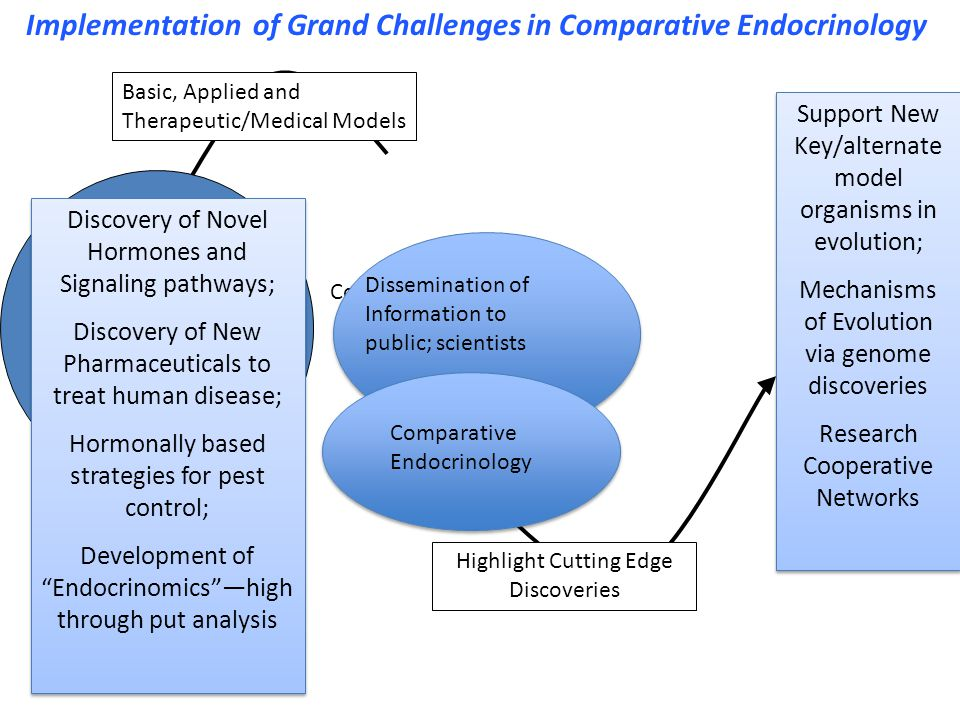 North American Society for Comparative Endocrinology (NASCE) Purpose: To promote the study of hormones, hormone action in diverse animal species; to foster interdisciplinary collaborations; to promote the development of databases and other research tools for comparative endocrinology; to advocate for funding for comparative endocrinology research The NASCE will become incorporated as a nonprofit organization in the spring of 2010.
