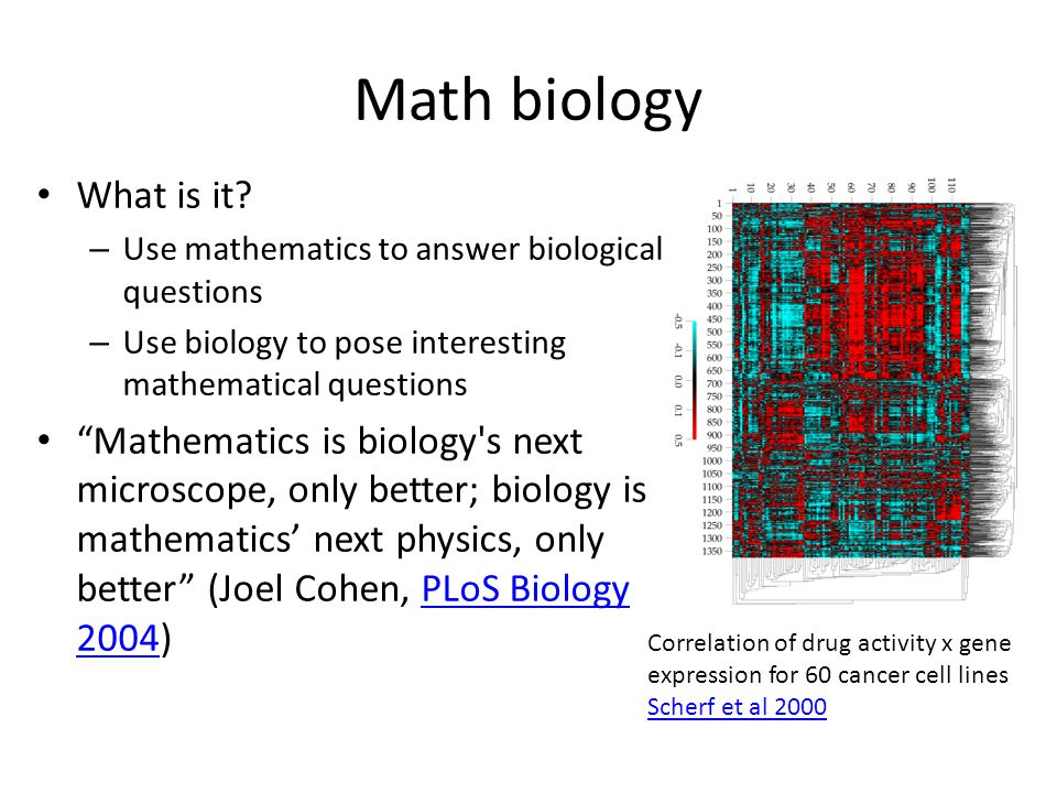 Math biology What is it.
