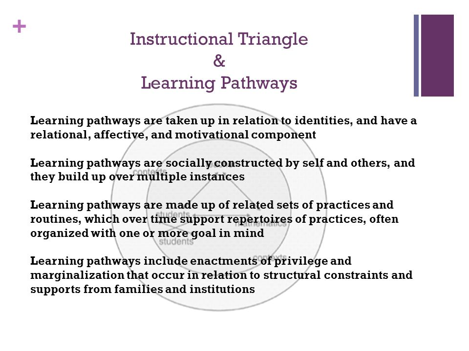 + Instructional Triangle & Learning Pathways Learning pathways are taken up in relation to identities, and have a relational, affective, and motivatio
