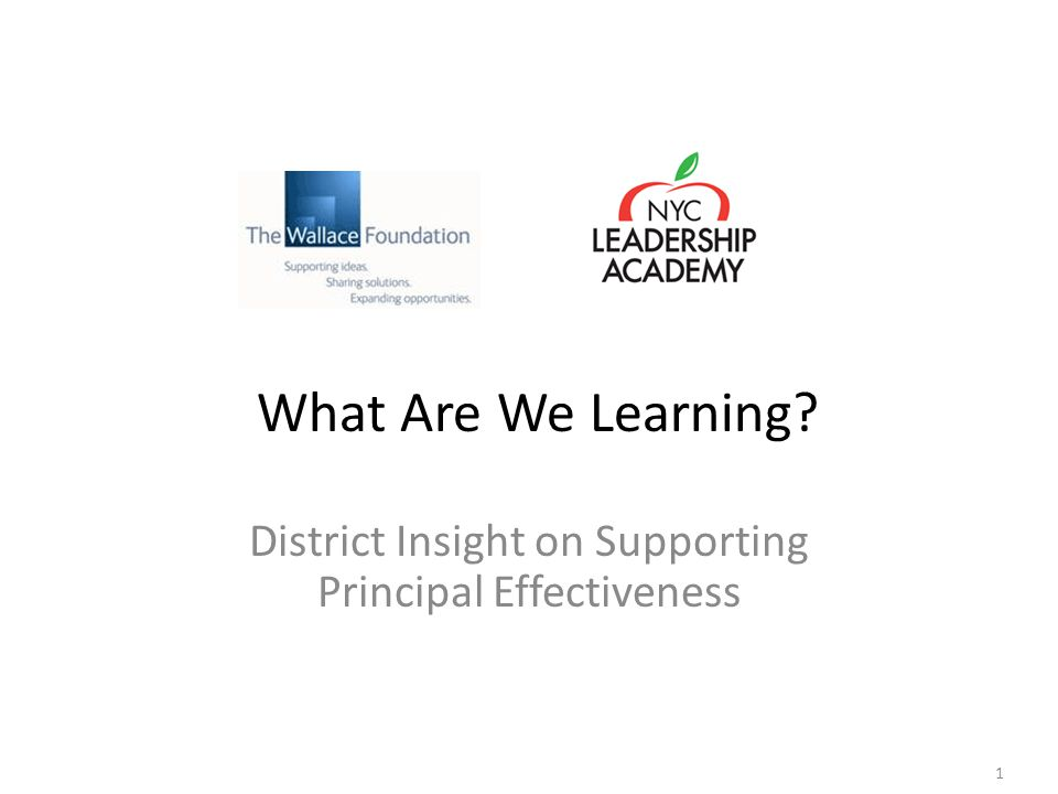 1 District Insight on Supporting Principal Effectiveness What Are We Learning