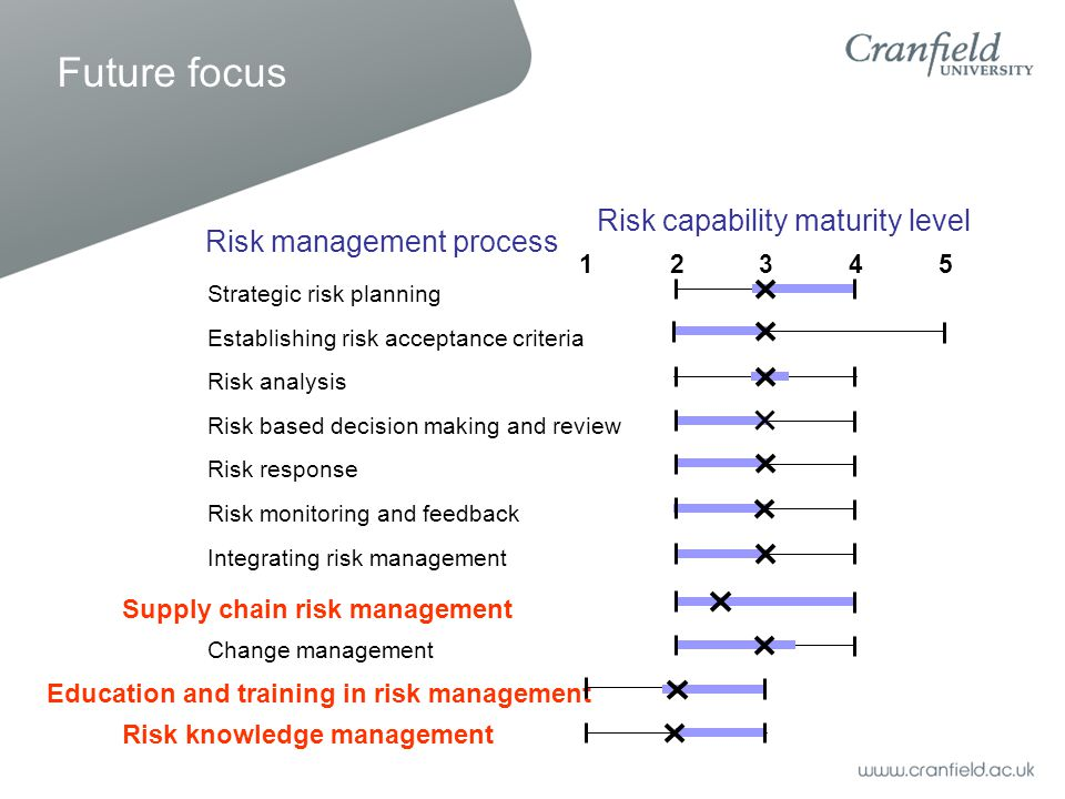 Risk management process Strategic risk planning Establishing risk acceptance criteria Risk analysis Risk based decision making and review Risk response Risk monitoring and feedback Integrating risk management Supply chain risk management Change management Education and training in risk management Risk knowledge management Risk capability maturity level 12345 Future focus