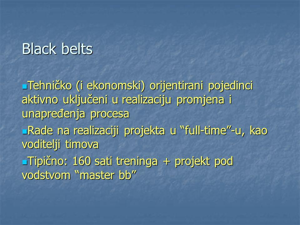 Black belts Tehničko (i ekonomski) orijentirani pojedinci aktivno uključeni u realizaciju promjena i unapređenja procesa Tehničko (i ekonomski) orijen