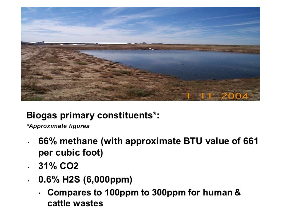 66% methane (with approximate BTU value of 661 per cubic foot) 31% CO2 0.6% H2S (6,000ppm) Compares to 100ppm to 300ppm for human & cattle wastes Biogas primary constituents*: *Approximate figures
