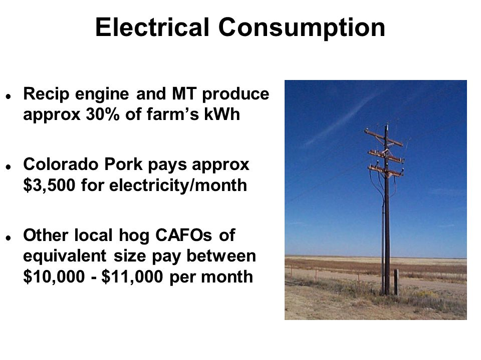 Electrical Consumption Recip engine and MT produce approx 30% of farm's kWh Colorado Pork pays approx $3,500 for electricity/month Other local hog CAFOs of equivalent size pay between $10,000 - $11,000 per month