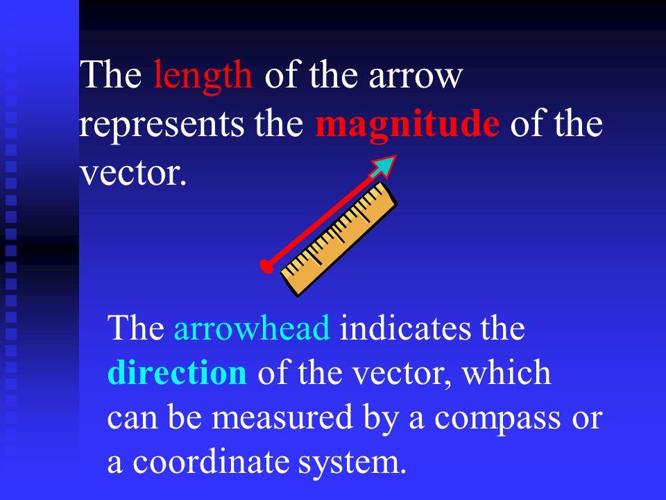 Vector addition is commutative. V + W= W + V