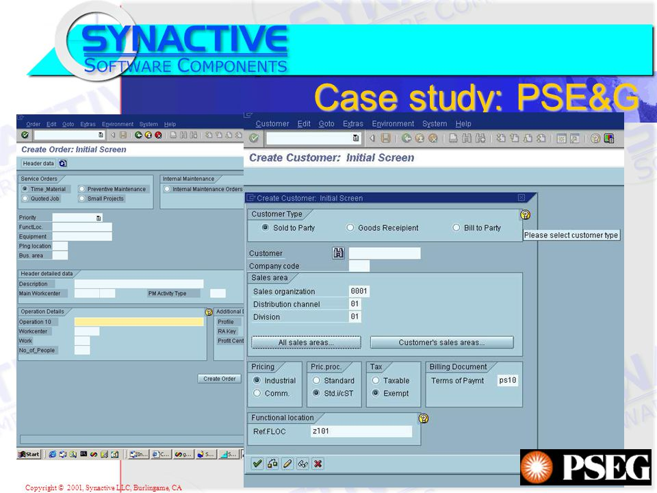 Copyright © 2001, Synactive LLC, Burlingame, CA Case study: PSE&G